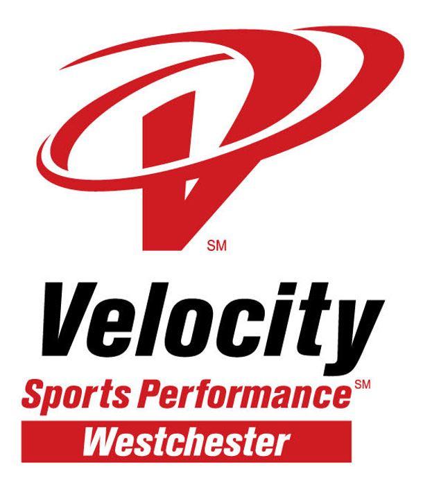Velocity Logo cropped